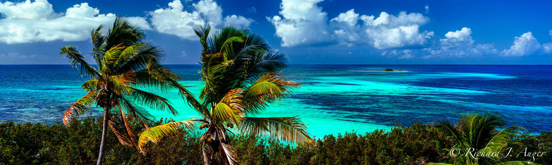 Bahia Honda State Park, Florida Keys, Tropical, Florescent Greens, Blues, Palm Trees, Ocean, Sky, Panorama, Photograph, Photographer