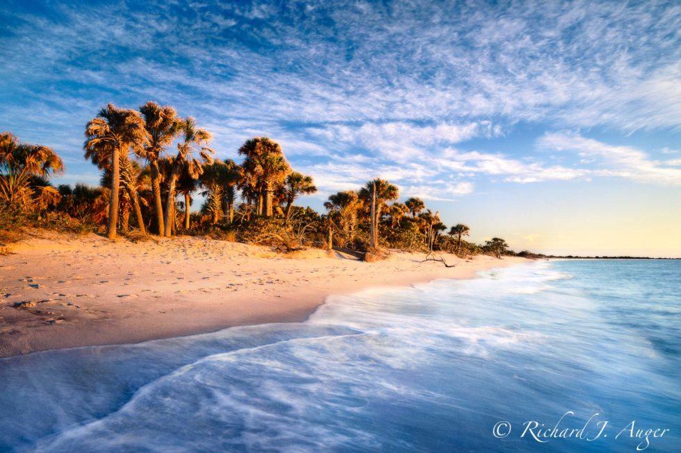 Cayo Coast State Park, Beach, Florida, Nature, Sunset, Ocean, Palm Trees