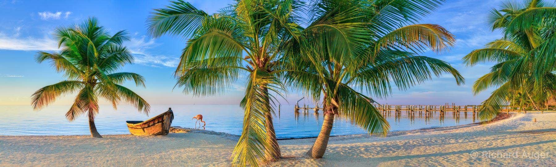 Islamorada, Florida Keys, Palm Trees, Beach, Boat, Nautical, Sunrise, Flamingo, Sand, Peaceful