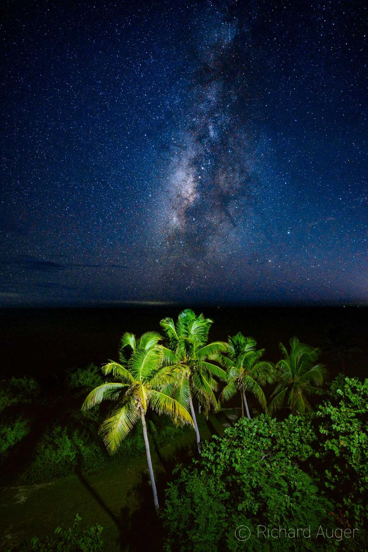 Bahia Honda State Park, Florida, Milky Way, Palm Trees, Strobist, Nighttime, Photograph, Landscape