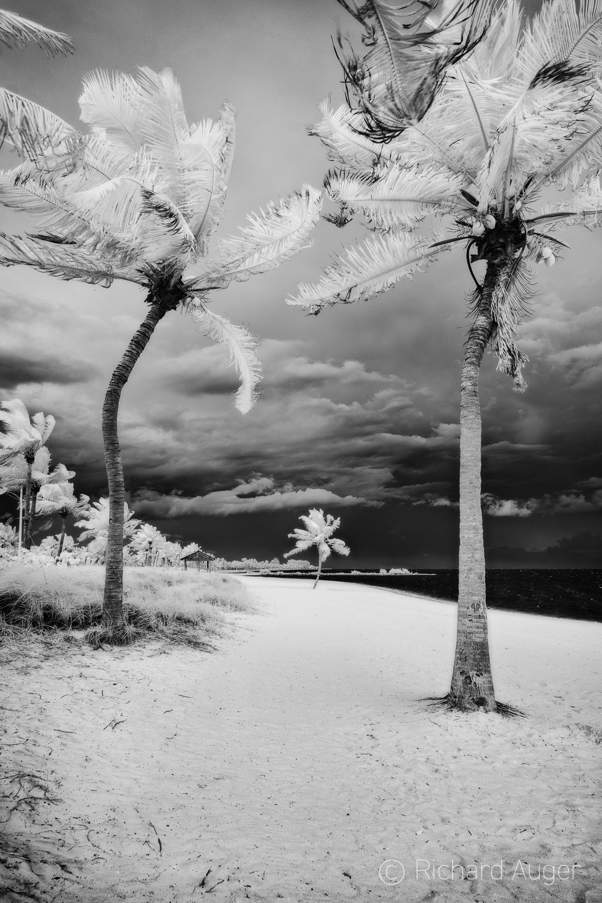 Smathers Beach, Key West, Florida Keys, Black and White, Photograph, Beach, Water, Stormy