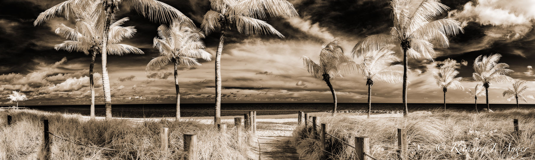 Key West, Florida, Smathers Beach, Monochrome, Sepia, Infared, Photography, Landscape, Richard Auger, sepia tone, black and white, panorama