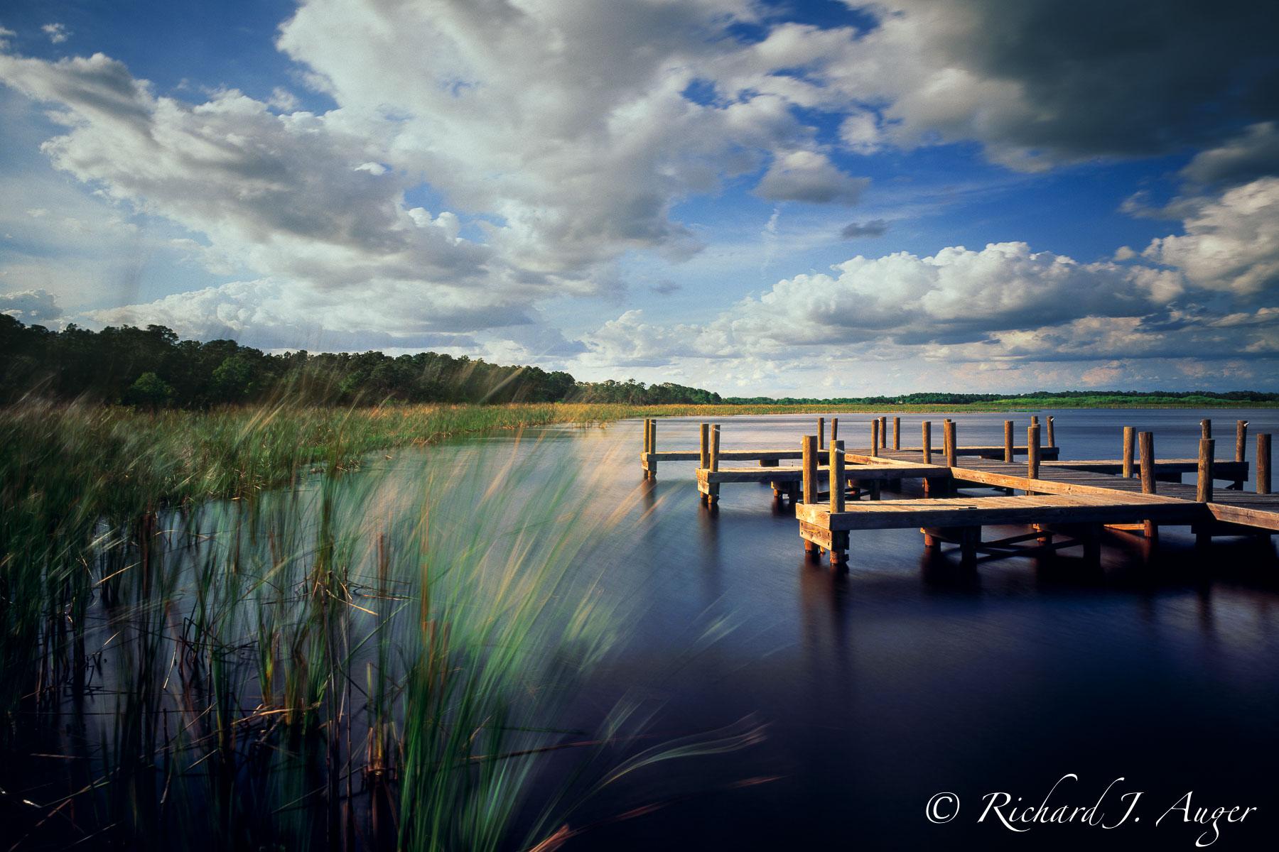 Moss Park, Orlando, Florida, swamp, dock, grass, water, dark, clouds, park, photograph
