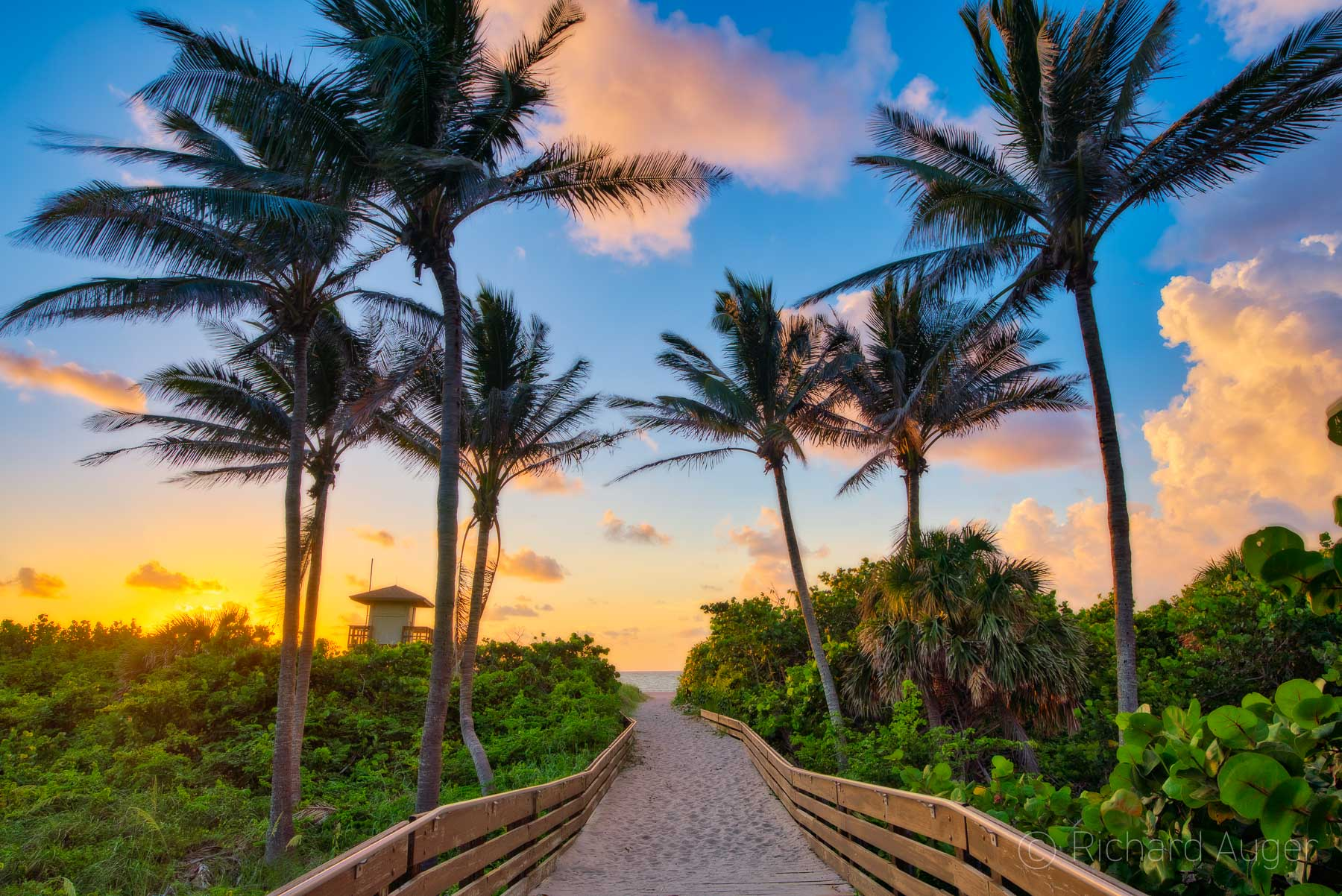 Ocean Reef Park, Riviera Beach, Florida, Sunrise, Palm Trees, Board Walk, Art, Photograph