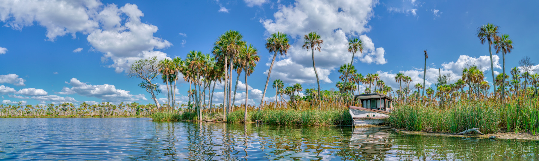 Chassahowitzka River, Bay, Florida, Boat, Palm Trees, Landscape, Photograph, Swamp