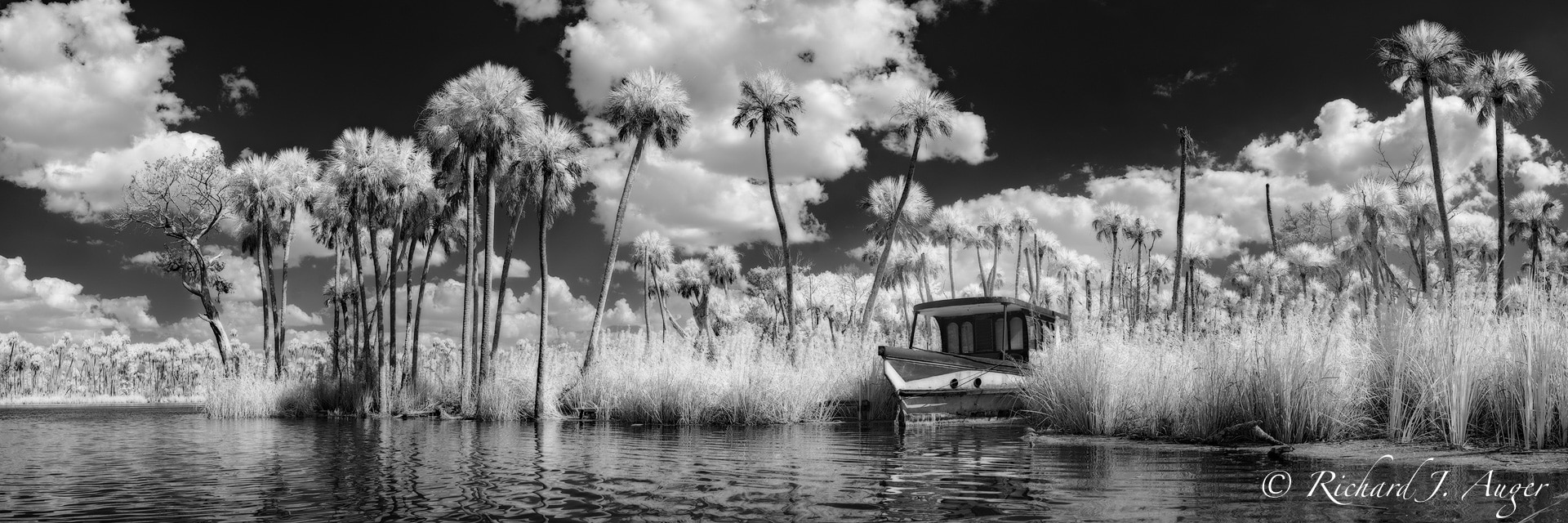 Chassahowitzka river, Florida, Chaz, boat, swamp, palm trees, coastal, storm, water, landscape, photographer, panorama