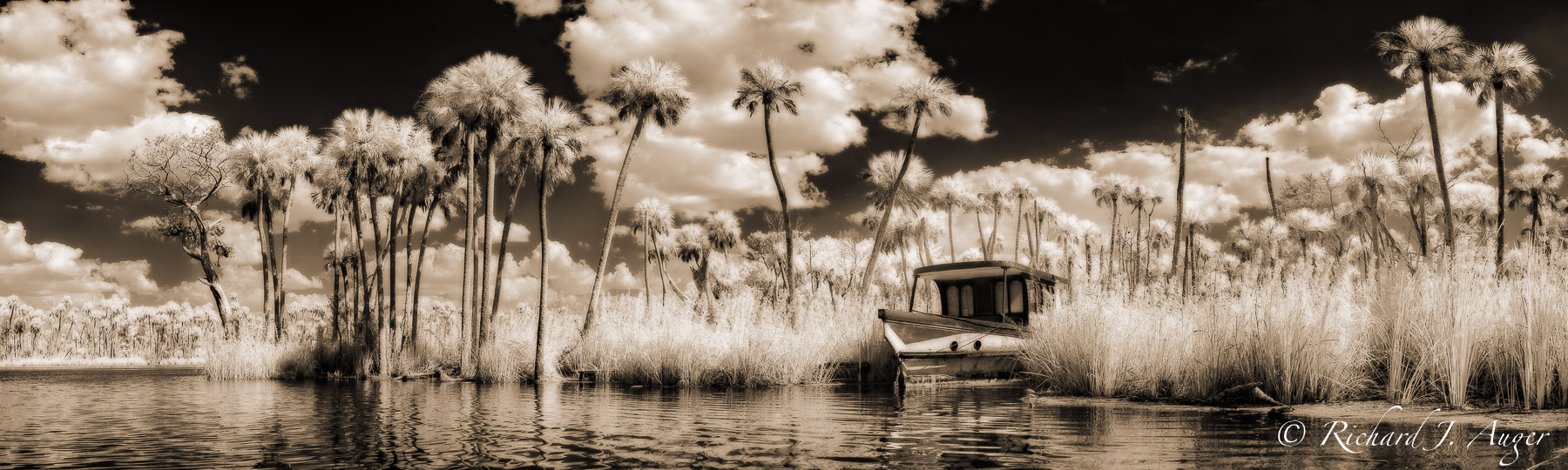 Chassahowitzka river, Florida, Chaz, boat, swamp, palm trees, coastal, storm, water, landscape, photographer, sepia tone, black and white, panorama