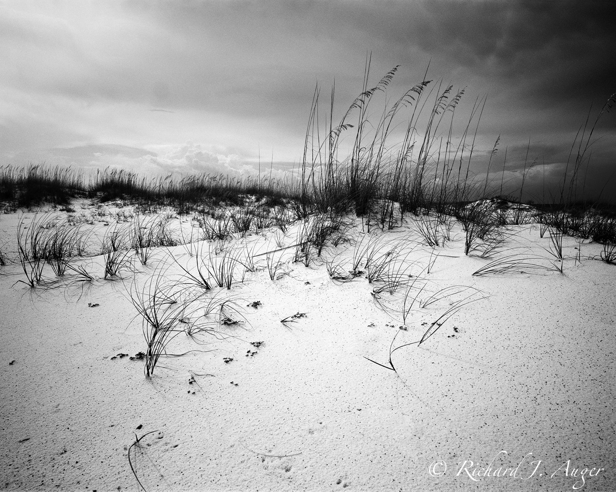Pensacola Beach 1, Escambia County, FL
