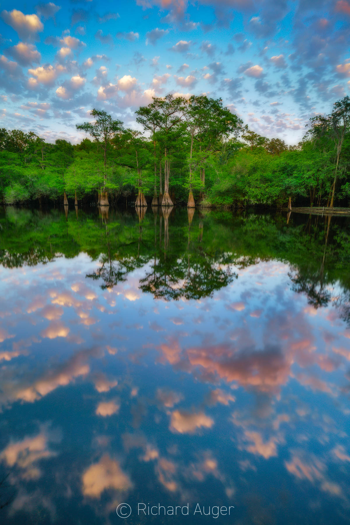 Santa Fe River, Florida, Sunset, Orange, Blue, Clouds, Cypress, Water, Photograph, Photographer, Nature, Landscape