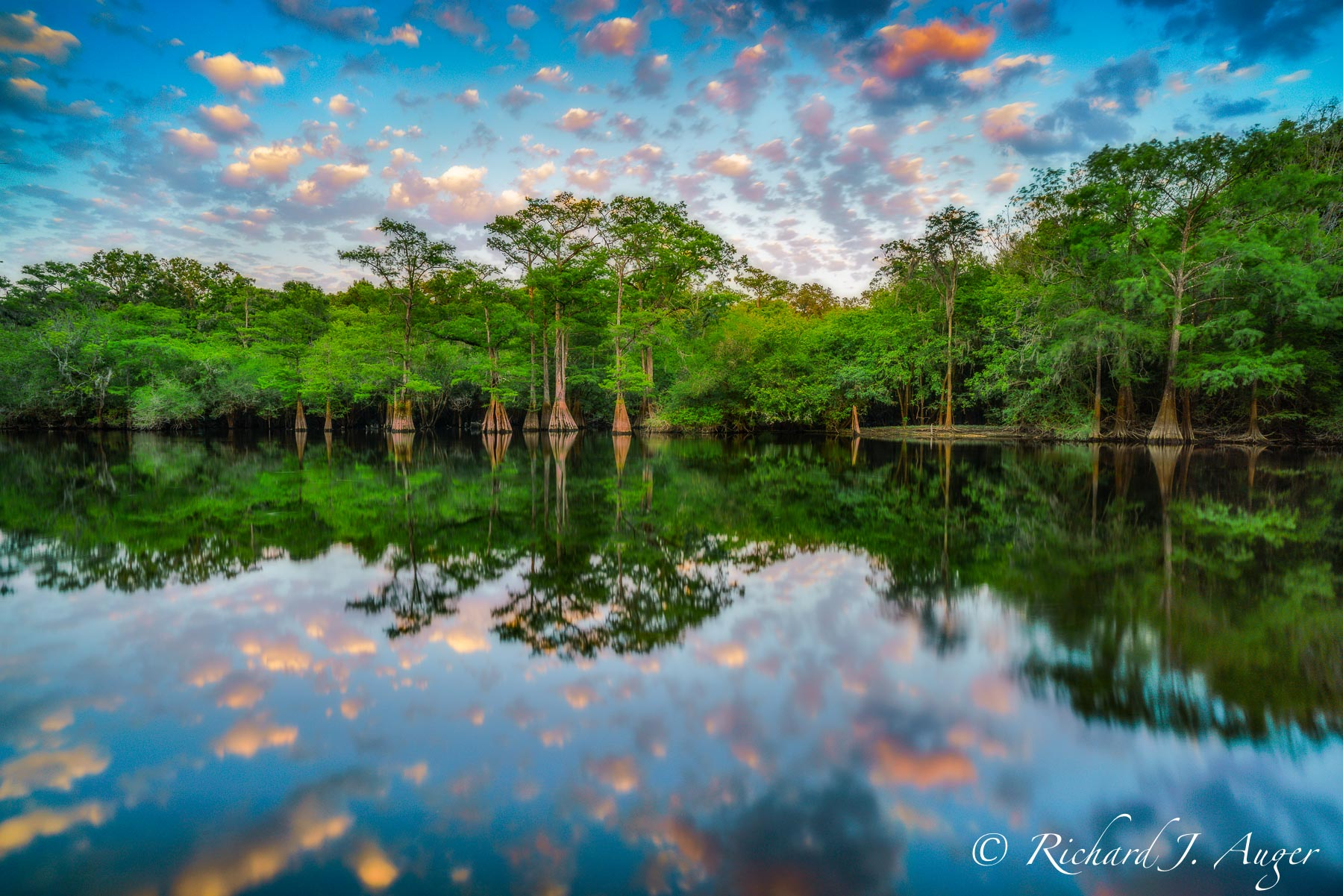 Santa Fe River, Florida, Sunset, Orange, Blue, Clouds, Cypress, Water, Photograph, Photographer, Nature, Landscape