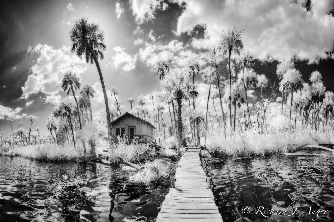 Chassahowitzka River, Chaz, Florida, Swamp, Palm Trees, Fishing Shack, Stormy, Black and White, Monochrome, Photograph, Photo, Nature, Landscape, Richard Auger