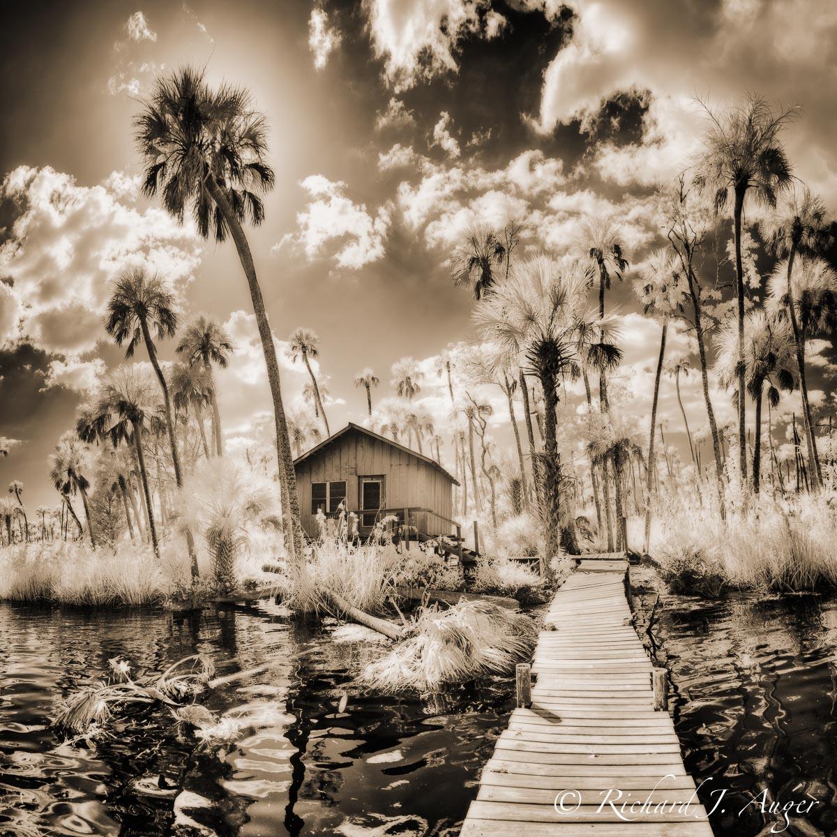 Chassahowitzka River, Florida, Shack, Walkway, Palm Trees, Water, Coastal, Swamp, Kayaking, Landscape, Photographer, Infrared, Backlit, sepia tone, monochrome