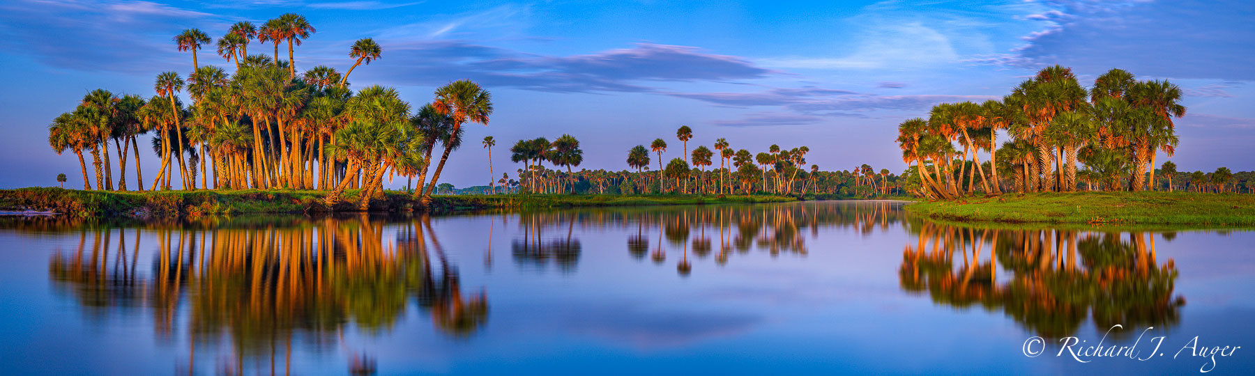 St Johns River, Florida, Orlando, Big Econlockhatchee, Econ, Palm Trees, Purple, Orange, reflections, morning