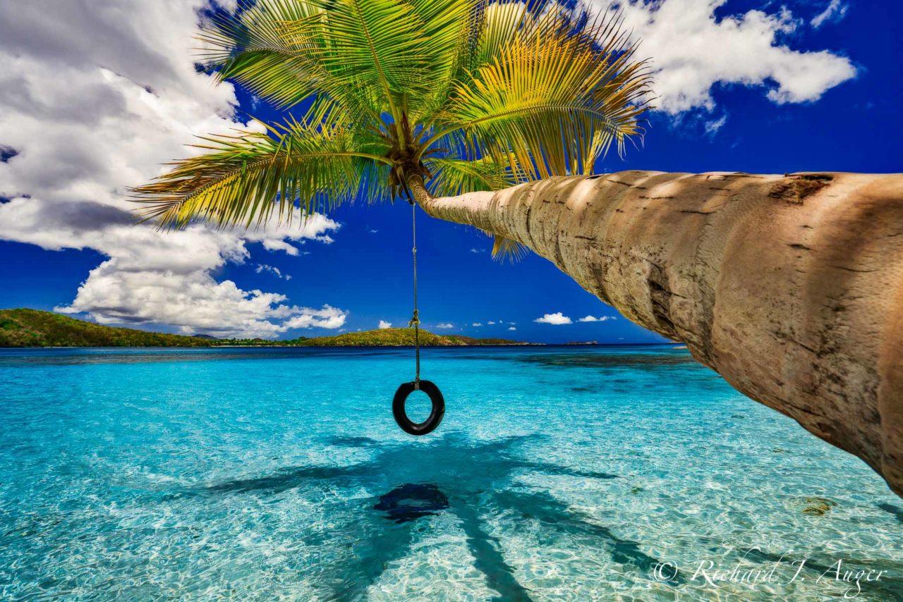 Oppenheimer Beach, St John, US Virgin Island, Palm Tree, Tire Swing, Caribbean, Paradise, Ocean, Beach