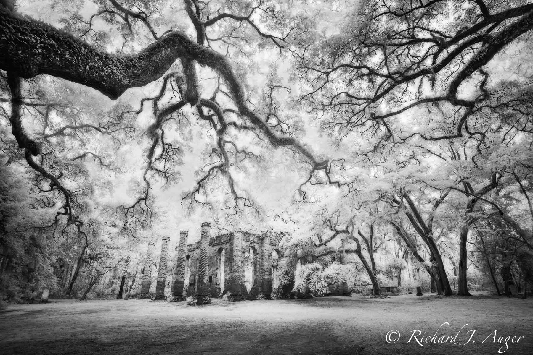 Sheldon Church Ruins, South Carolina, Low Country, black and white, photograph, infrared, haunted, magical, forest, architecture