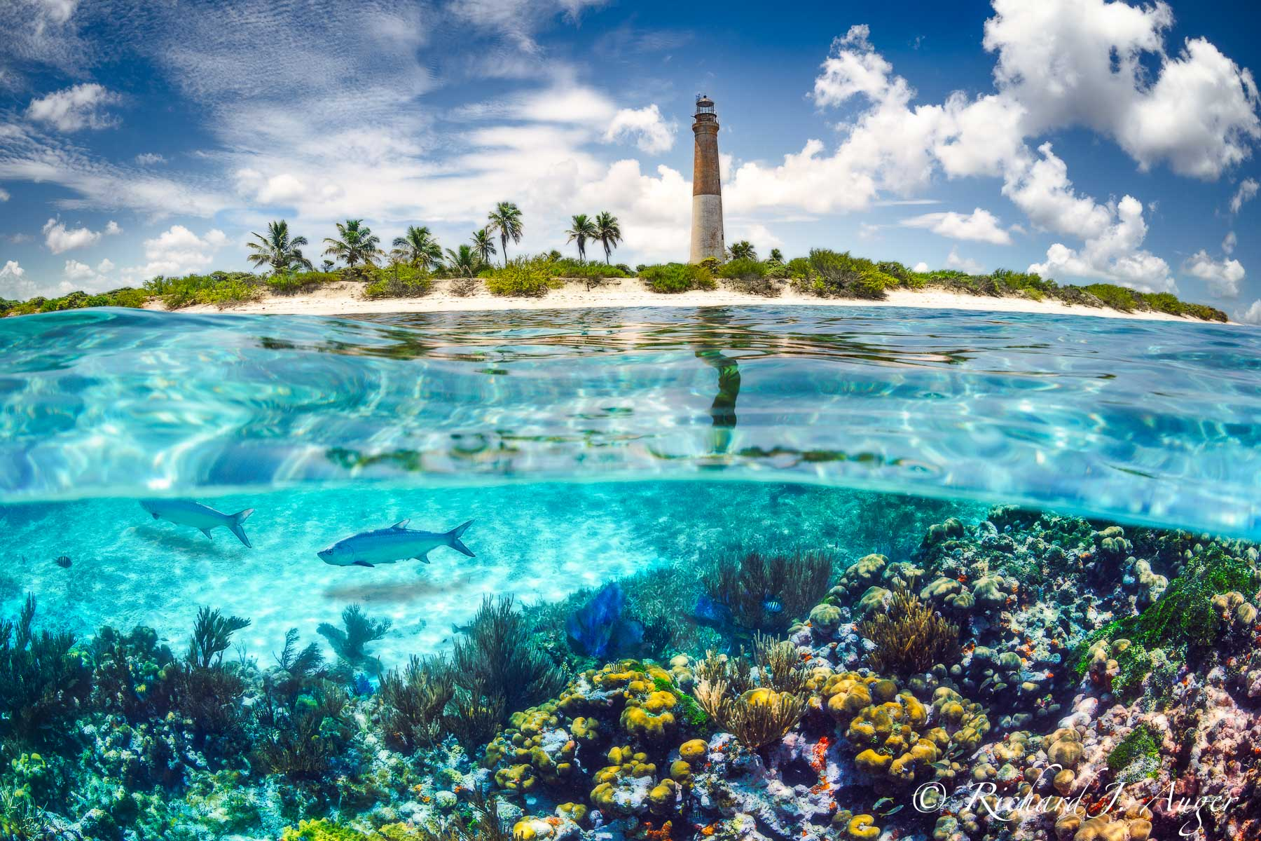 Loggerhead Lighhouse, Loggerhead Key, Dry Tortugas National Park, Little Africa Reef, Florida Keys, Ocean, Underwater, Landscape, Photograph, Photographer, Richard Auger