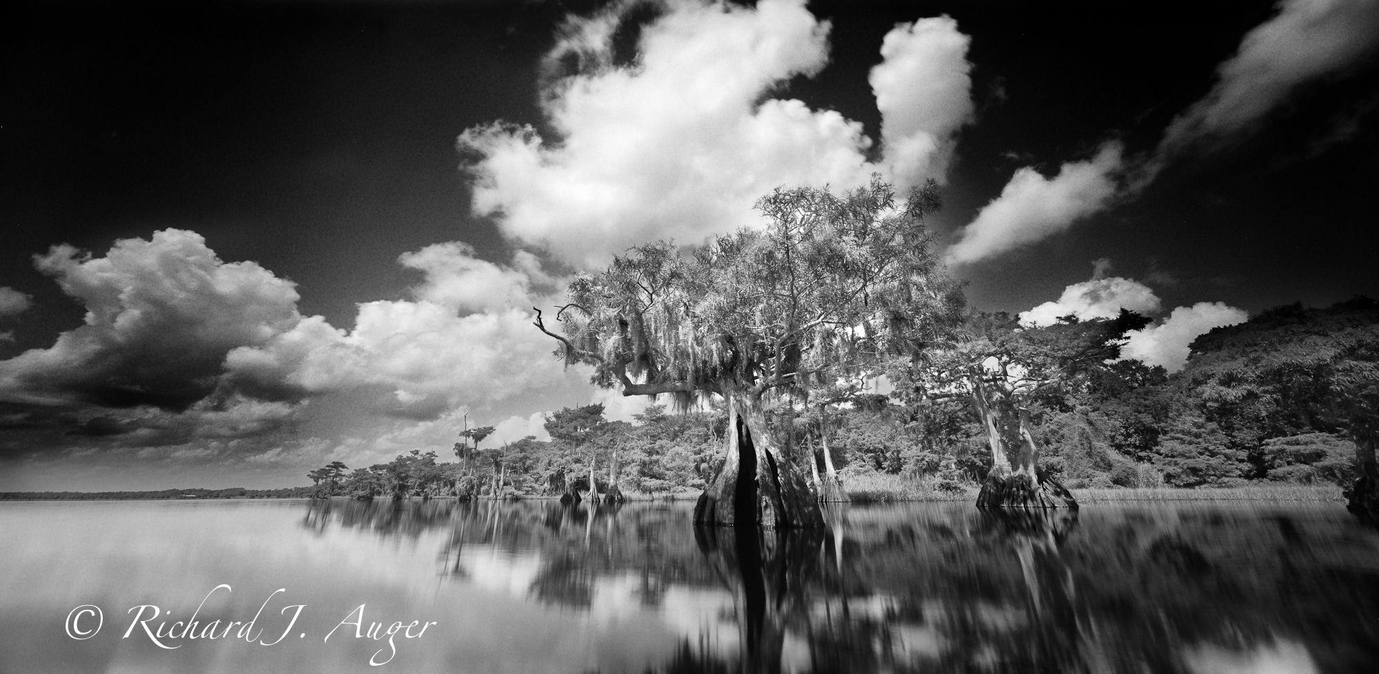 Blue Cypress Lake: Indian River County, Florida