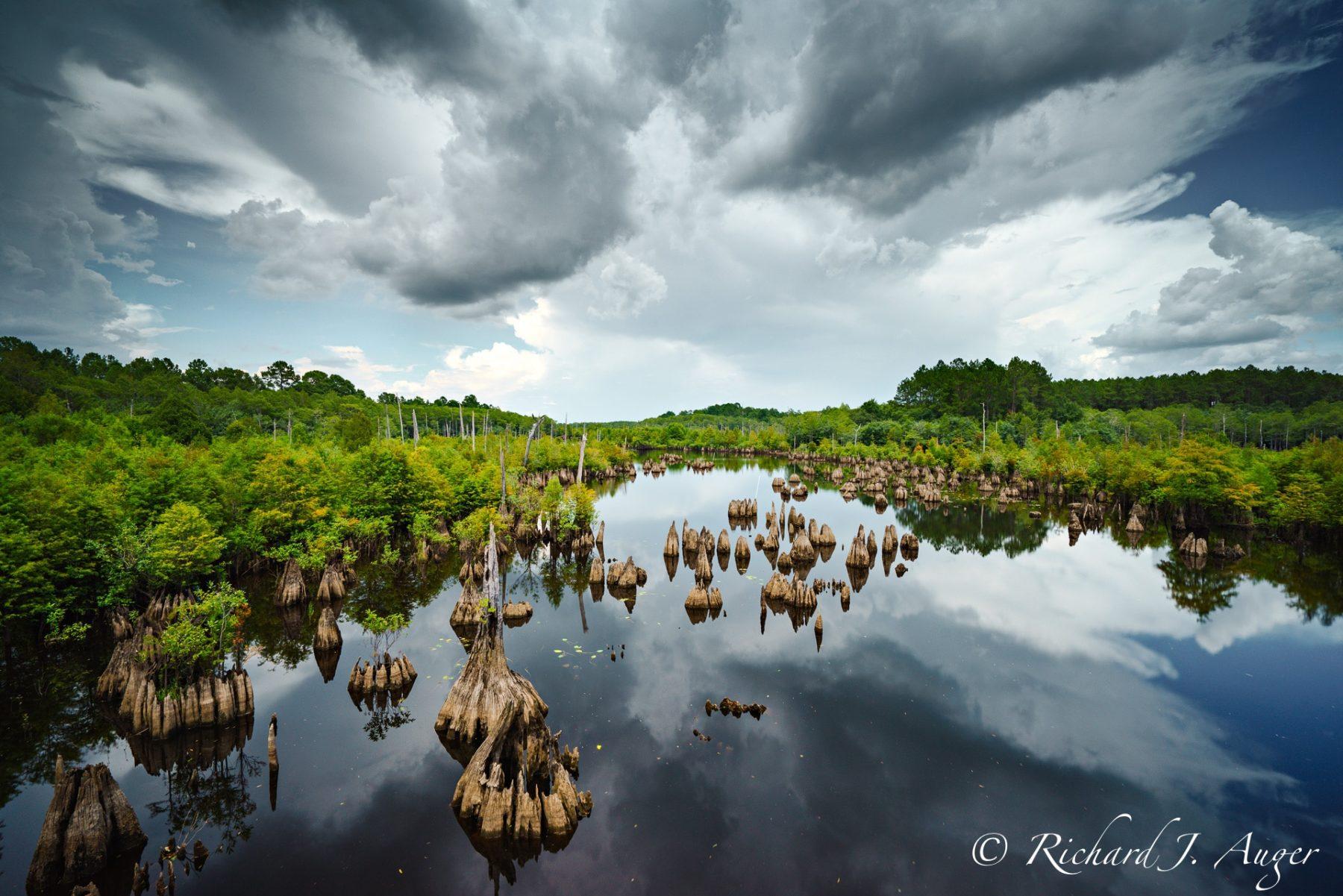 Dead Lakes, Florida, Wewahitchka, Cypress, River, Storm